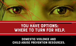 Domestic Violence and Child Abuse Supports